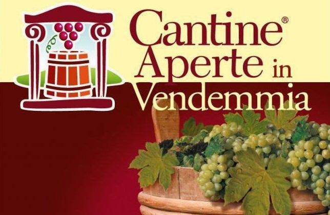 Open Cellars in Harvest - Umbria