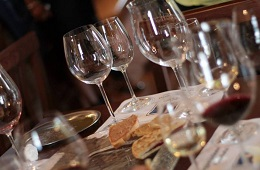 Visit and wine tasting in winery in Perugia