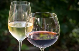 Wine Tastings in Wine Bar in Torgiano