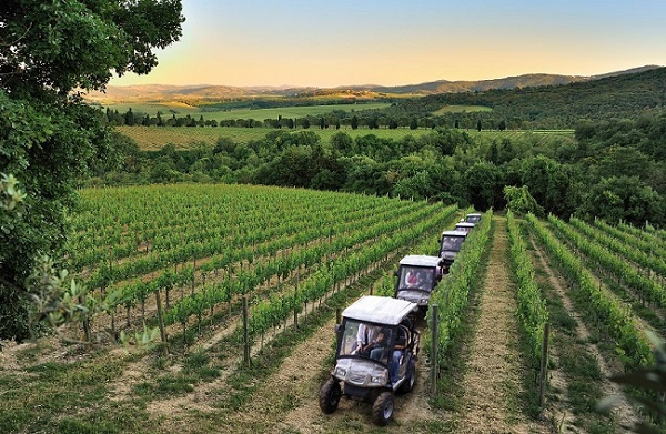 Ecotour in the vineyards by electric jeep and wine tasting
