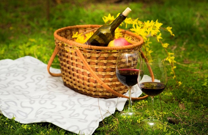 Picnic and hiking in vineyard