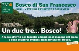 Un due tre… Bosco!<br>14 Maggio/11 Giugno